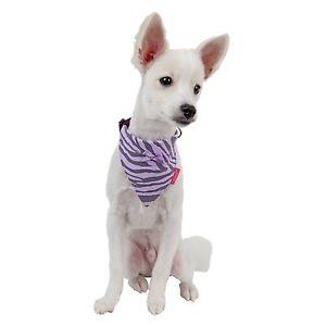 Pinkaholic - Dog Puppy Leopard Collar Scarf - Leo - Purple - S, M, L