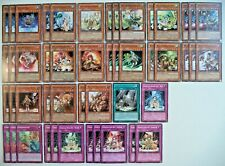 YUGIOH 48 CARD FAMILIAR POSSESSED DECK