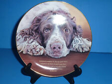 Danbury Mint, Springer Spaniels, Someone to Comfort, Free Shipping, Ch10369