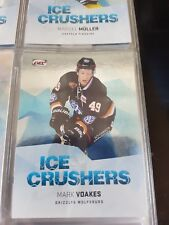 DEL 2016-2017 BASIC 2 Parallel Ice Crushers Mark Voakes 06/10 Grizzlys Wolfsburg
