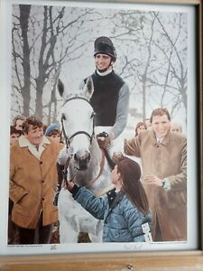 Desert Orchid, The Winning Team by Paul Hart Limited Edition Print