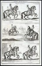 Antique Equestrian Print-GAIT-HORSE-ON GROUND AIR-Nicolas Tardieu-Parrocel-1733
