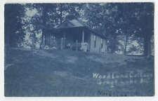 Cyanotype RPPC Woodland Cottage Grays Lake Illinois  Photograph