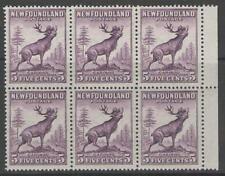 Newfoundland and Labrador North American Stamp Blocks