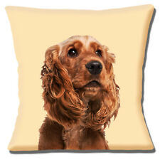 "TAN BROWN Ruby Cocker Spaniel foto stampa su Crema 16 ""Cuscino Coprire"