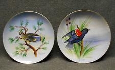 2 Hand Painted Bird Plates - Wall Hanging Decor - Signed - K. Suyama - S. Kato