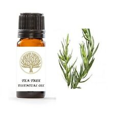 Tea Tree Antifungal Athletes Foot Treatment Oil for Athletes Foot & Fungal Nail