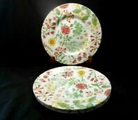 "Royal Stafford Hedgerow Pattern Wildflower Earthenware 4 Salad Plates 8 1/2"" 1s5"