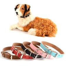 Collier (standard) pour chien