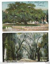 Savannah, Ga Charleston, S. C. CEMETERY POSTCARDS Magnolia Cemetery Bonaventure