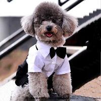 Kleiner Hund Haustier Smoking Fliege Anzug Mantel Nette Kleidung Welpe Kostüm