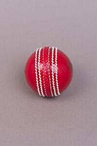 Box of 6 Cricket Dynamics InvinciBalls
