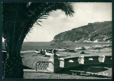 Savona Noli Capo di Barche Foto FG cartolina MZ4850