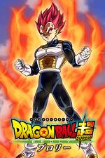 Dragon Ball Super Vegeta Super Saiyan God W/Broly Logo 12inx18in Free Shipping