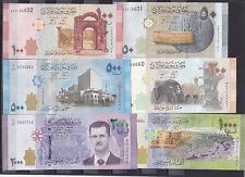 SYRIA 50 100 200 500 1000 2000 LIRA 2009 2013 2015 P 112 113 114 115 116 117 SET