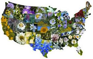 NEW 1000 PC SHAPED JIGSAW PUZZLE OFFICIAL FLOWERS OF THE UNITED STATES SEALED