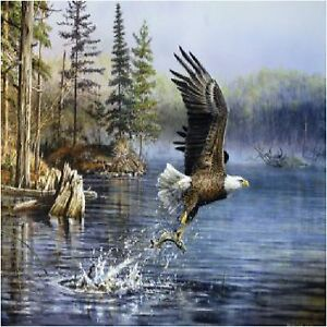 AMERICAN BALD EAGLE FISHING  COASTERS SET OF 4 FABRIC TOP / RUBBER BACKED