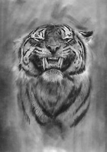 original drawing A3 311PY art samovar Charcoal realism animal tiger Signed 2021