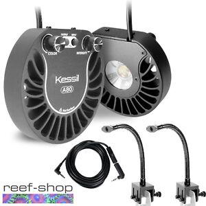 2x Kessil A80 Tuna Blue LED Lights & 2x Mini Goosenecks & Link Cable Bundle