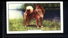Gallaher Dogs 2nd Series 1938 - Finnish Spitz No. 6