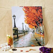 "Paint By Number On Canvas DIY Painting Kit 16""*20"" with Frame Autumn Street"