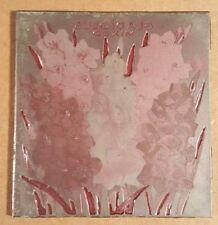 Vintage Etching Engraved Printing Machine Press Plate Stamp ~ Gladiolus Mixed
