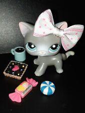 """LPS Pet shop Chat Europeen / Petshop Short Hair Cat Kitty #126 """"AUTHENTIC"""" +Acc"""