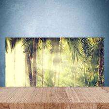 Crédence de cuisine en verre Panneau Paroi 100x50 Nature Forêt