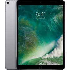 "Apple iPad Pro 10.5"" Wi-Fi 256GB A10X Chip Retina Display - Space Gray MPDY2LL/A"