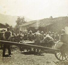 K.u.k photo tyrol du sud ITALY 1914-1918 AUTRICHE ITALIA militaire wk ww Kuk (l-2993
