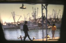 Vintage 1960s/1970s Rocky Point Mexico Boats Fishing - Home Movie Super 8 Reel