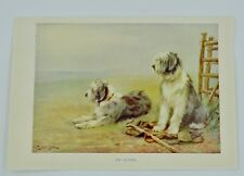 William Luker Jr. Old English Sheepdog Print On Guard W. Tuker junr