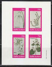 Souvenir sheet of 4 MNH stamps FLOWERS Morea Oxybaphus Epidendrum Gnaphalium **