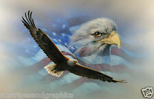 American Flag Soaring Bald Eagle RV Camper Motorhome Mural Decal Decals Graphics