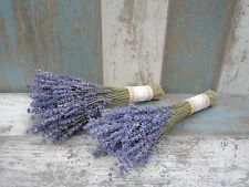 Dried English Lavender 2x Bunch Wedding Flowers Bridesmaid Bouquet Navy Blue 10""