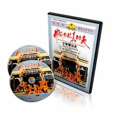 Real Chinese Traditional Shao Lin Kung Fu Shaolin Ying Kung-fu by Shi Deci 2Dvds