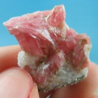 Gem Pink Rhodochrosite Crystal Specimen-rh0912