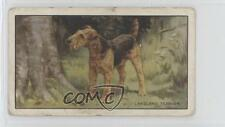 1936 Gallaher Dogs Series 1 Tobacco Base 12 Lakeland Terrier Non-Sports Card 1t5