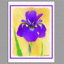 6 Purple Bearded Iris Flower Painted Style Original Handmade Note Greeting Cards