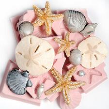 Starfish Sand Dollar Seashell Silicone Mold Collection Food Safe Art Craft  (255