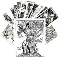Postcards Pack [24 cards] Funny Monsters Vintage Engravings by A Rackham CC1140