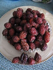 NEW NATURAL UNSCENTED DRIED ROSE HIPS--1/2 cup--RUSTIC COUNTRY PRIM BOWL FILLER