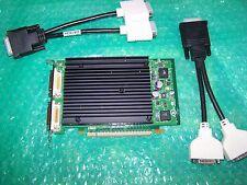NVIDIA QUADRO NVS 440 256mb PCIe x16 Quad display card + cavi DVI, articolo non utilizzato