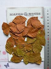 Leaves RUST & Spot Shimmer GREEN 40 Pk Paper LRG 48mmLong x 28mmWide Manor House