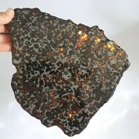 532g Rare slices of Kenyan Pallasite olive meteorite A5755