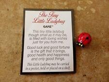 Ganz Tiny Little Ladybug Pocket Charm ~ Token & Card ~ Good Luck & Happiness