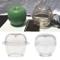 Klare Kunststoff Apfelform Kerzenform Kerzengießformen SeifenformFür DIY