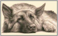 GERMAN SHEPHERD ALSATIAN dog - Full counted cross stitch kit