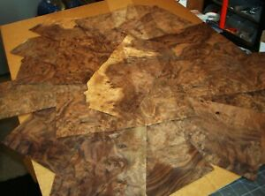 REAL WOOD VENEER SELECTION OF X30+ MIXED BURR SHEETS,RESTORATION,MARQUETRY,CRAFT