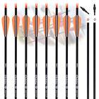 """12P Archery Carbon Hunting Target Arrows 26/28/30"""" SP500 Recurve & Compound Bows"""